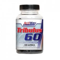 ACTIWAY - Tribulus-60 (120 caps)
